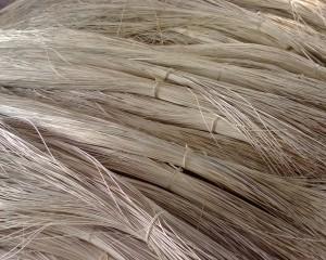 113302 Rattan Raw Material